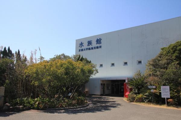 http://kurhouse-shirahama.or.jp/wp/wp-content/uploads/2013/04/IMG_7861_mini1.jpg